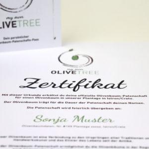 Patenschaft Olivenbaum Zertifikat